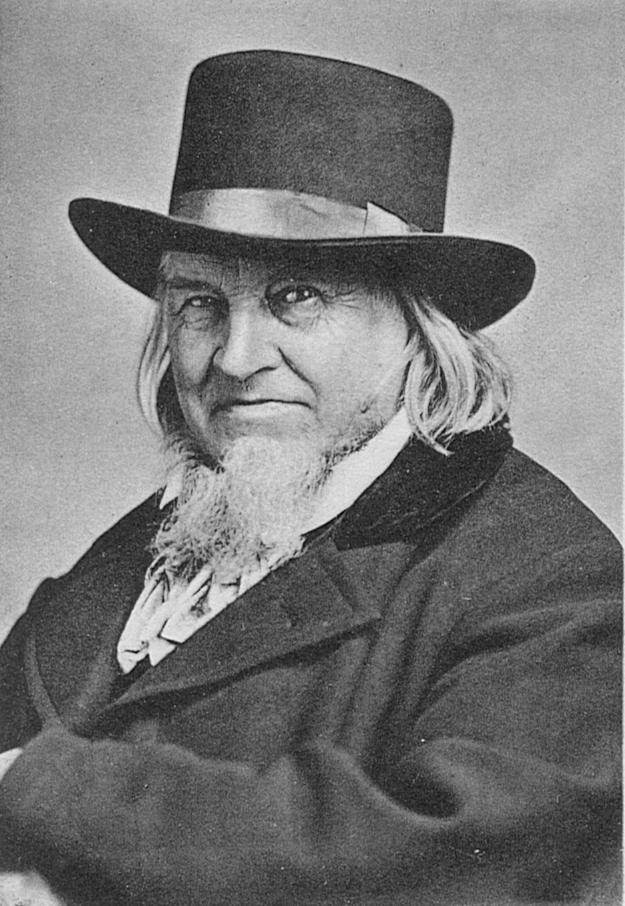 Hoffmann 1872